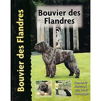 Bouvier des Flandres - Pet Love