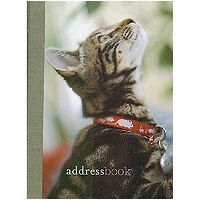 Cats and Kittens Mini Address Book